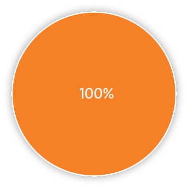 Pie chart representing 100% carbon dioxide